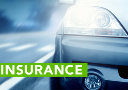 rodney-d-young-auto-insurance
