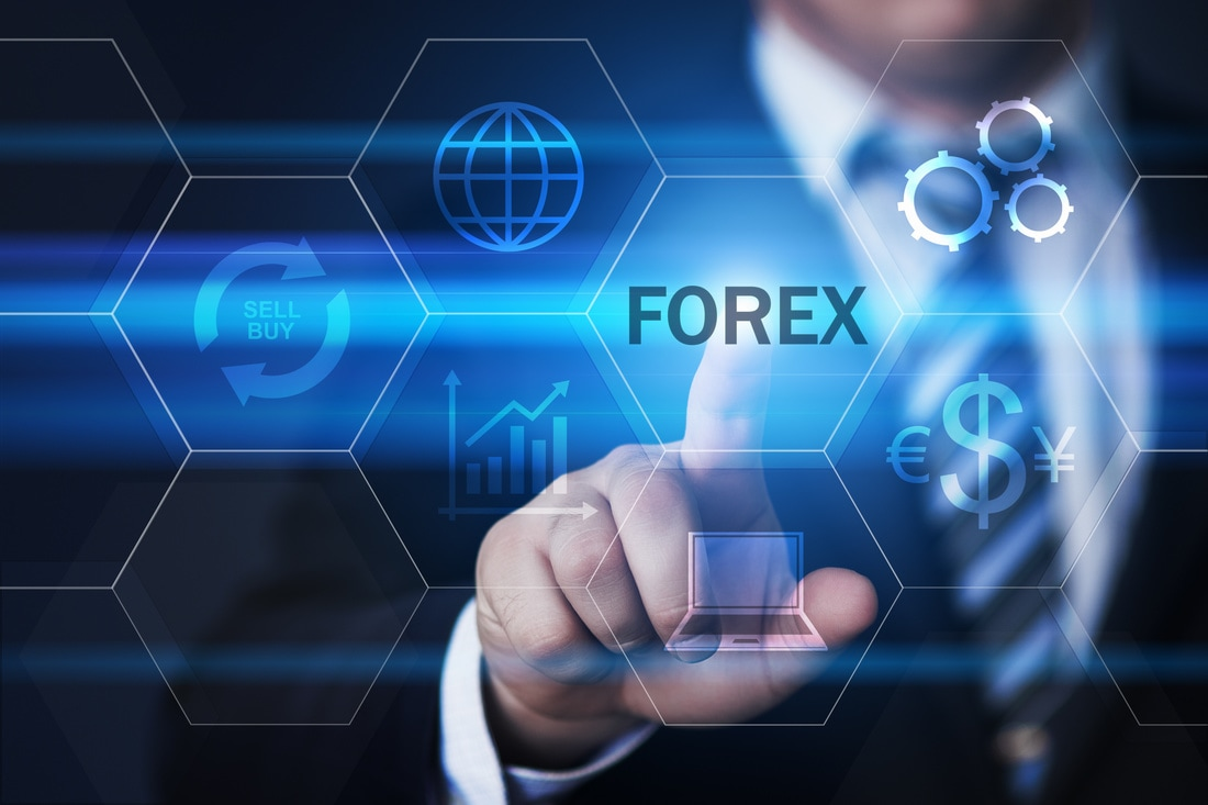Everything You Need to Know About a Forex MLM Company ''Tradera''