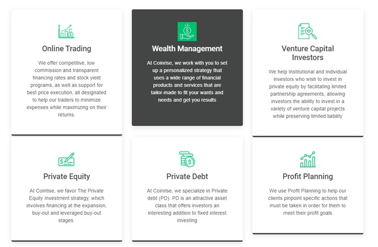 Coinrise investing services summary